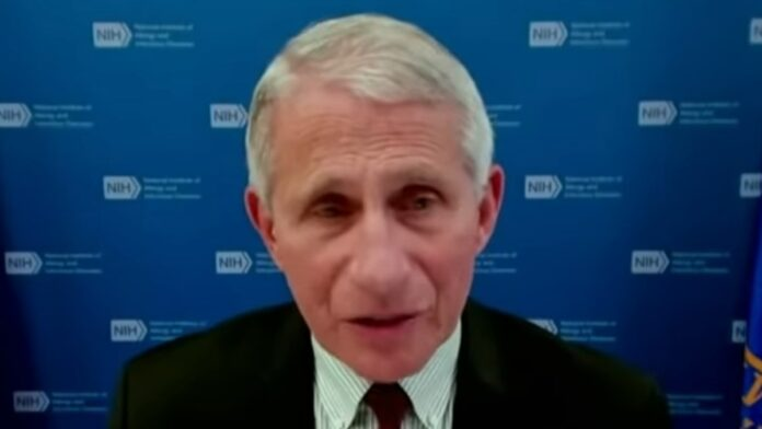 Breaking: The Fire Fauci Movement Gains Momentum...