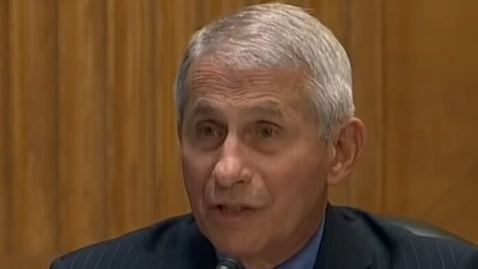 Fauci Follows Cuomo in Profiting off the Pandemic...