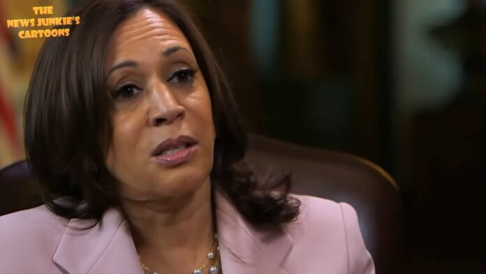Watch: Kamala Says Rural People are Incapable of Photocopying Their ID...