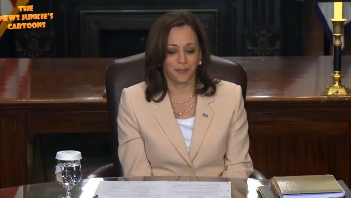Watch: Reporter Thanks Kamala After She Ignores His Question...