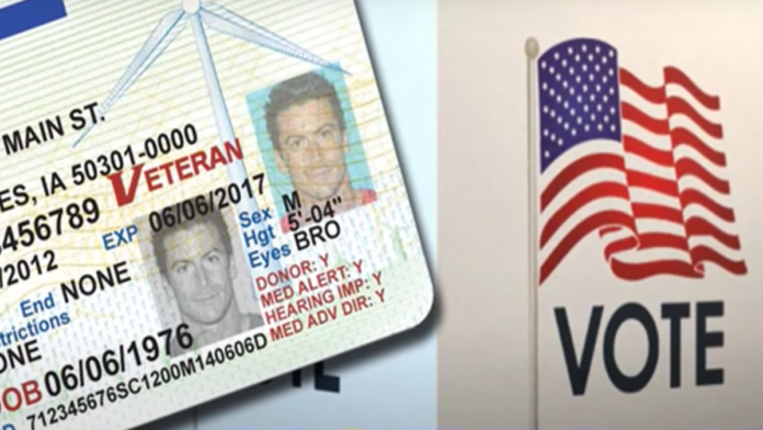 This Smashes the Left's Narrative on Voter ID...