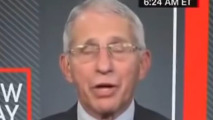 If You Like to See Fauci Get Irritated, then Watch This...
